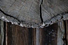Абстрактная деревянная текстура естественная стоковое фото