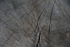 Абстрактная деревянная текстура естественная стоковые фото