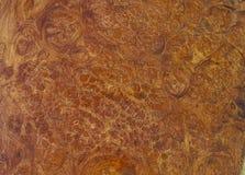 абстрактная древесина предпосылки стоковые изображения