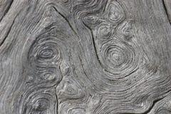 абстрактная древесина Стоковое Изображение RF