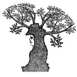 Абстрактная девушка с рожками ветвей Стоковые Изображения RF