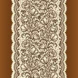 Абстрактная лента шнурка Стоковые Изображения RF