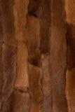 абстрактная животная текстура шерсти предпосылки фона стоковое фото