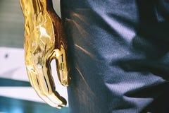 Абстрактная запачканная фотография портрета манекена Chrome человеческая стоковое фото rf