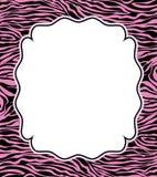 абстрактная зебра вектора текстуры кожи рамки Стоковая Фотография RF