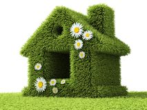 Абстрактная зеленая домашняя трава Стоковое фото RF