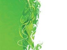 Абстрактная зеленая и белая волнистая предпосылка Стоковое Изображение