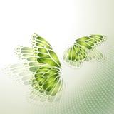 Абстрактная зеленая предпосылка с бабочкой Стоковое Фото