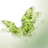 Абстрактная зеленая предпосылка с бабочкой Стоковые Фото