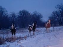 абстрактная зима ночи изображения фрактали стоковое фото