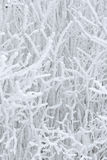 абстрактная зима Стоковые Фотографии RF