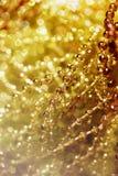 Абстрактная золотая предпосылка нерезкости Стоковое Фото