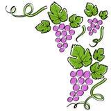 Абстрактная линия рамка виноградины Стоковые Фотографии RF
