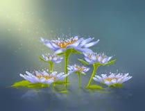 абстрактная лилия Стоковое Изображение