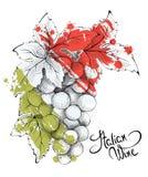 Абстрактная иллюстрация -- вино от Италии Стоковое фото RF
