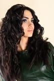 абстрактная иллюстрация стиля причёсок способа знамени Стоковые Фотографии RF