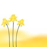 Абстрактная иллюстрация цветка narcissus желтого цвета предпосылки Стоковое Фото