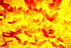 абстрактная картина листьев Стоковое фото RF