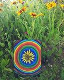 Абстрактная картина на холсте в парке лета Желтые круги цветка и радуги rudbeckia Стоковое Изображение RF