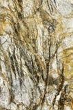 Абстрактная картина на шишке золотого утеса Стоковая Фотография RF