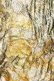 Абстрактная картина на шишке золотого утеса Стоковое Изображение RF