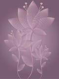 абстрактная карточка цветет приветствие Стоковая Фотография RF