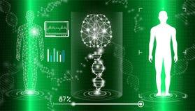 Абстрактная концепция технологии предпосылки в зеленом свете, человеческое тело излечивает Стоковые Фотографии RF