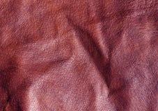 Абстрактная коричневая кожаная текстура Стоковые Фото