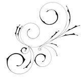абстрактная красивейшая орнаментальная свирль Стоковые Фотографии RF