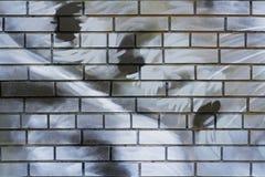 Абстрактная красочная серая, белая и черная кирпичная стена Стоковые Изображения RF