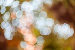 Абстрактная круговая предпосылка bokeh Christmaslight Стоковые Изображения