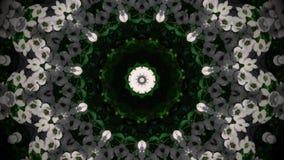Абстрактная мандала белого цветка Стоковое Изображение