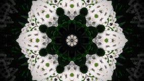 Абстрактная мандала белого цветка Стоковое Фото