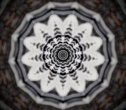 Абстрактная мандала цветка Стоковые Фото