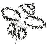 абстрактная муха пчелы стилизованный w b Стоковые Фото