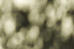 абстрактная нерезкость предпосылки Стоковое Фото