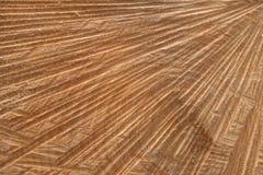 Абстрактная обработанная резанием поверхность ствола дерева стоковые изображения