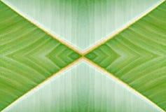 абстрактная предпосылка естественная Стоковые Изображения RF