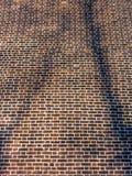 Абстрактная предпосылка, коричневый footway кирпича стоковые фото