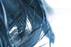 абстрактная предпосылка органическая Стоковая Фотография RF