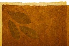 абстрактная предпосылка органическая Стоковые Фотографии RF