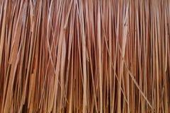 Абстрактная предпосылка сухой травы Стоковые Изображения RF