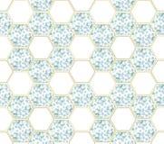Абстрактная предпосылка с ветвями евкалипта и диаграммами шестиугольника стоковые фото