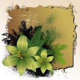 абстрактная предпосылка флористическая Стоковые Фотографии RF