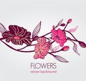 абстрактная предпосылка флористическая Стоковая Фотография RF