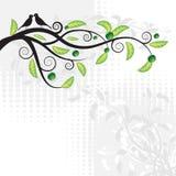 абстрактная предпосылка флористическая Стоковые Фото