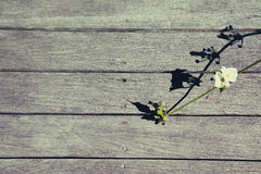 Абстрактная предпосылка, винтажный тон Стоковое фото RF