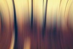 Абстрактная предпосылка леса Стоковые Фотографии RF