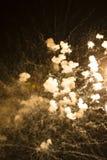 Абстрактная предпосылка: Покрашенный Sepia дым фейерверков Стоковое Изображение