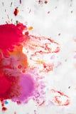 Абстрактная предпосылка помарок пинка, красный и maroon на белой бумаге Стоковые Фотографии RF